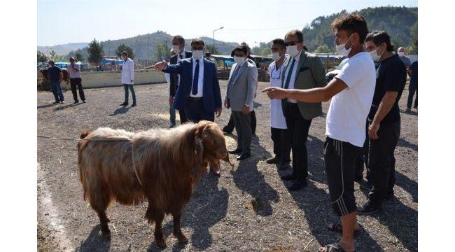 Vali Gürel hayvan pazarını denetledi