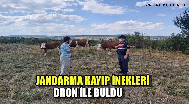 Jandarma kayıp inekleri drone ile buldu