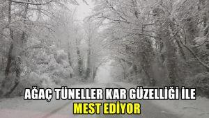 Ağaç tüneller kar güzelliği ile mest ediyor