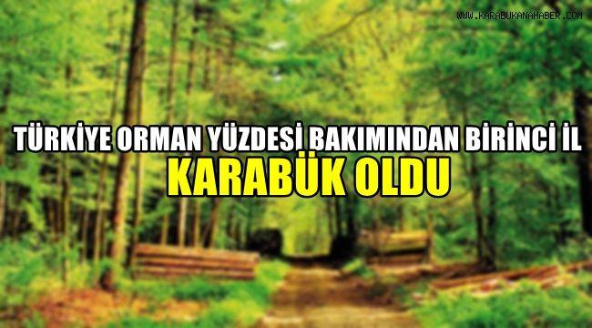 Türkiye'de orman yüzdesi bakımından birinci il Karabük oldu
