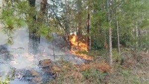 Vatandaşların dikkati orman yangınının önüne geçti
