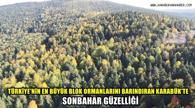 Türkiye'nin en büyük blok ormanlarını barındıran Karabük'te sonbahar güzelliği
